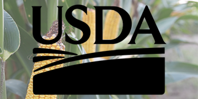 USDA logo on corn background
